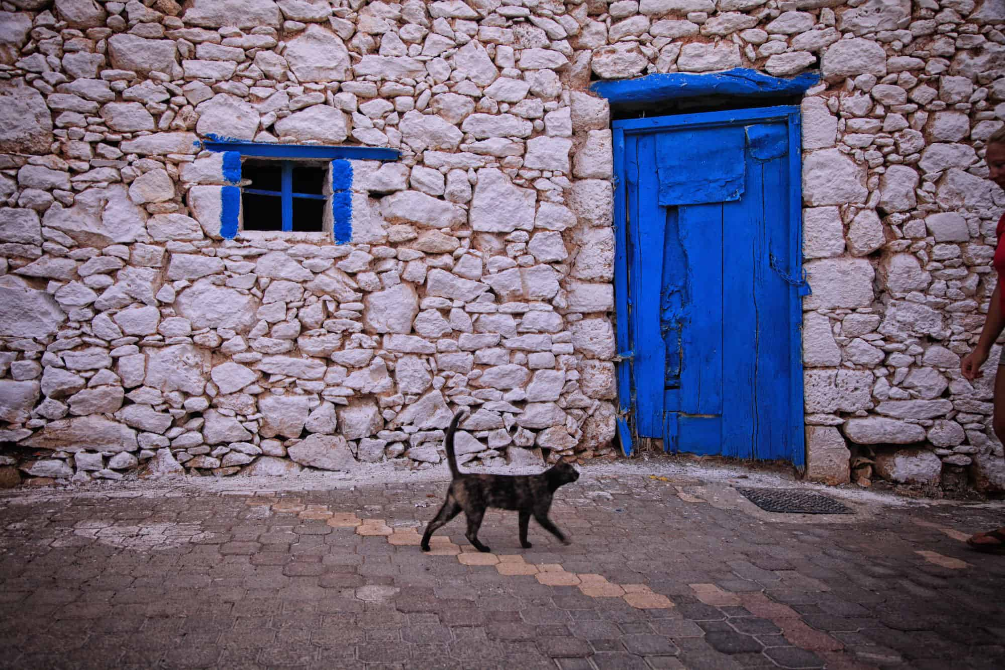 Cat In Crete Village