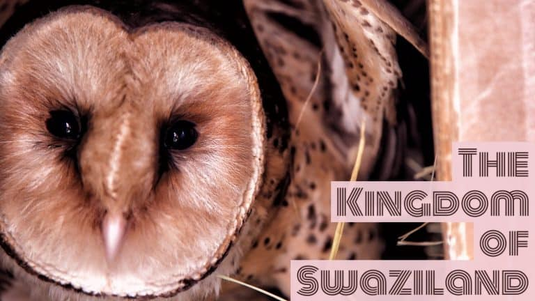 Things to do and see in Swaziland