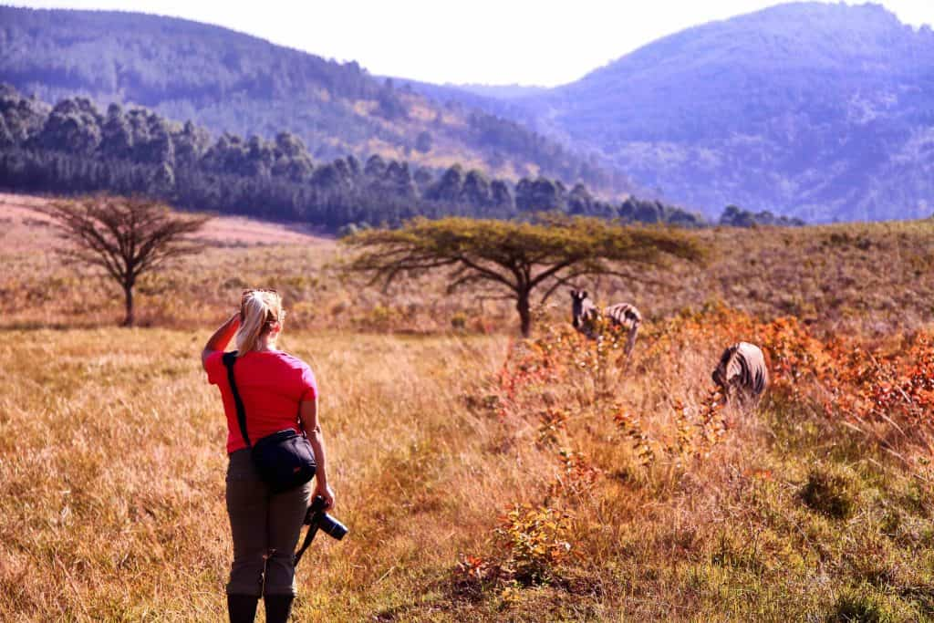 Tasha Hiking In Swazi Zebras