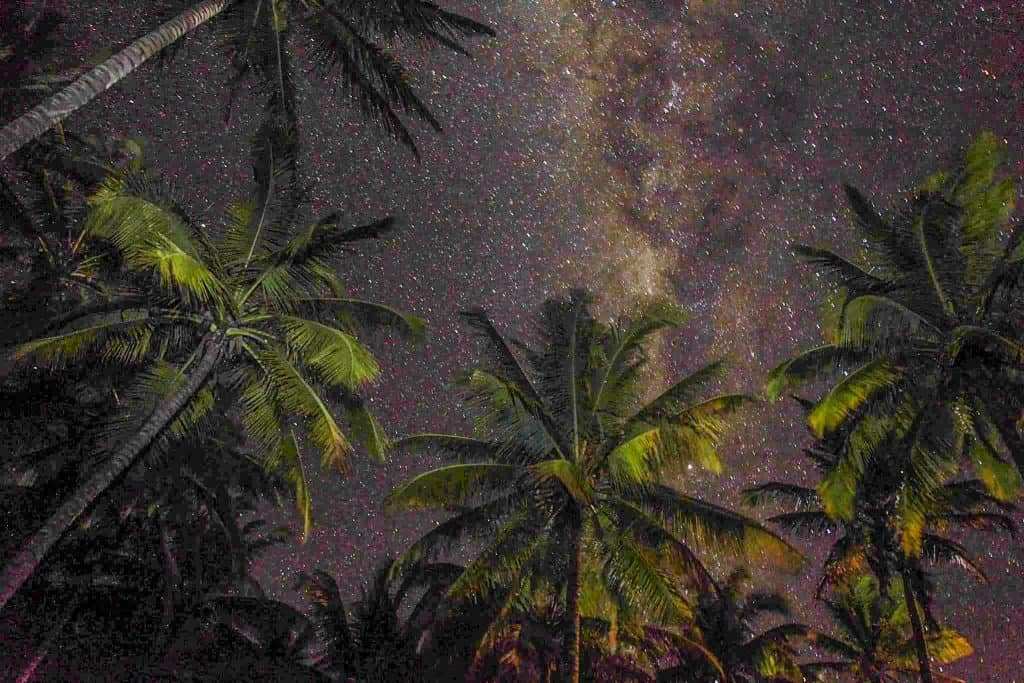 A starry night in Mozambique