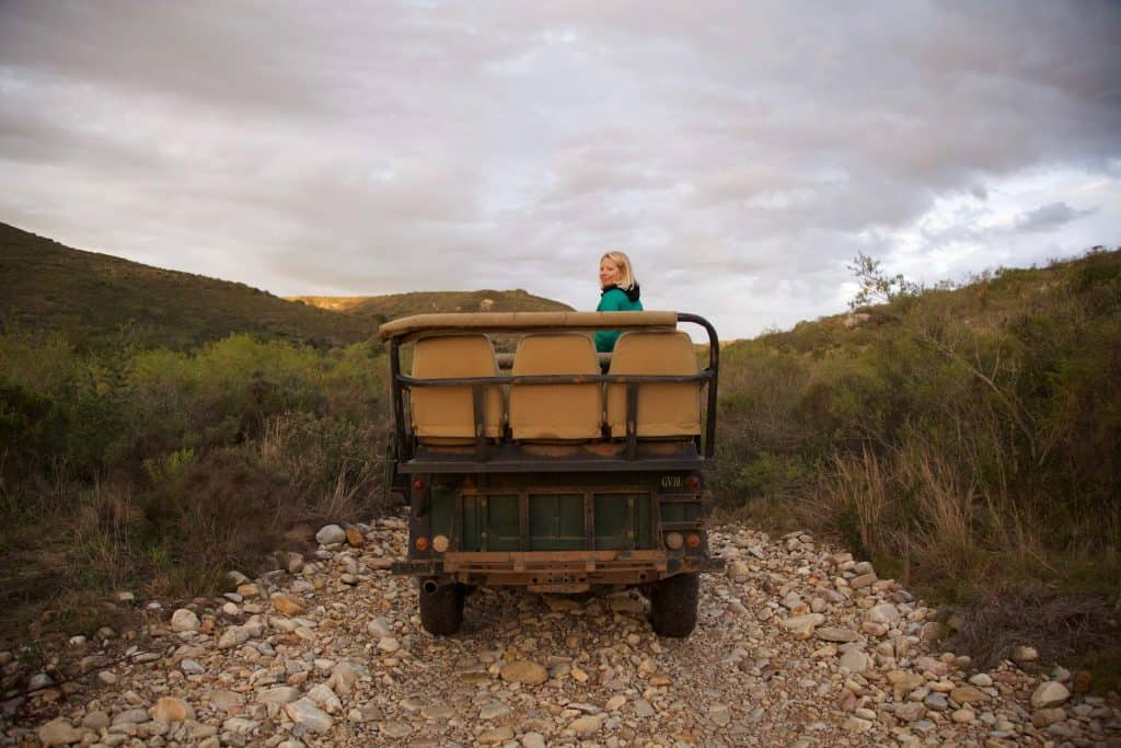 Game Drive at Gondwana Game Reserve