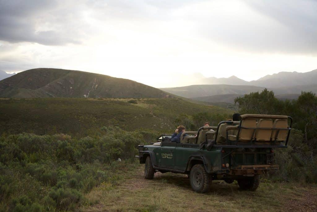 Gondwana Game Drive at Tented Eco Camp