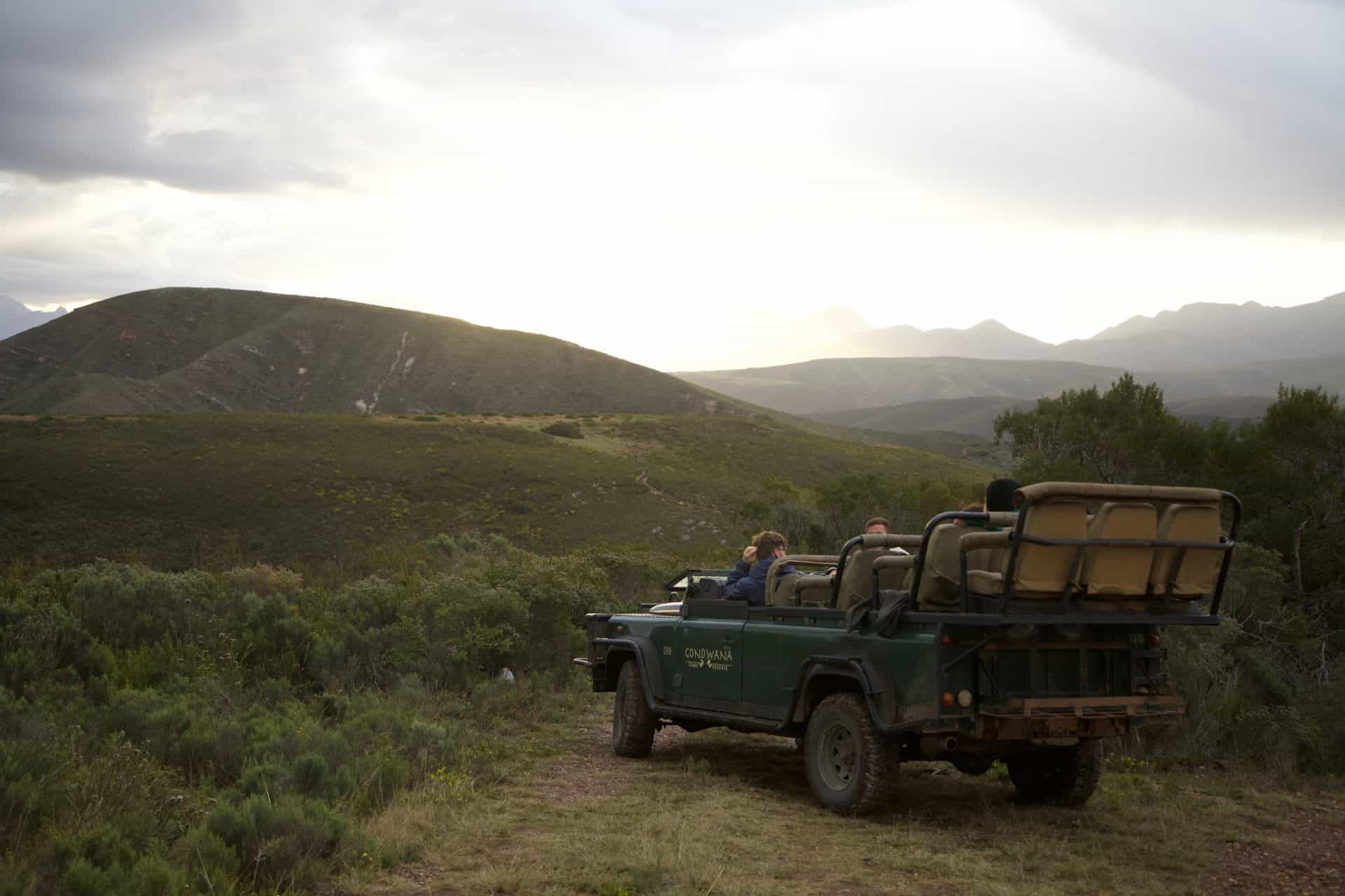 Gondwana Game Drive at Tented Eco Camp