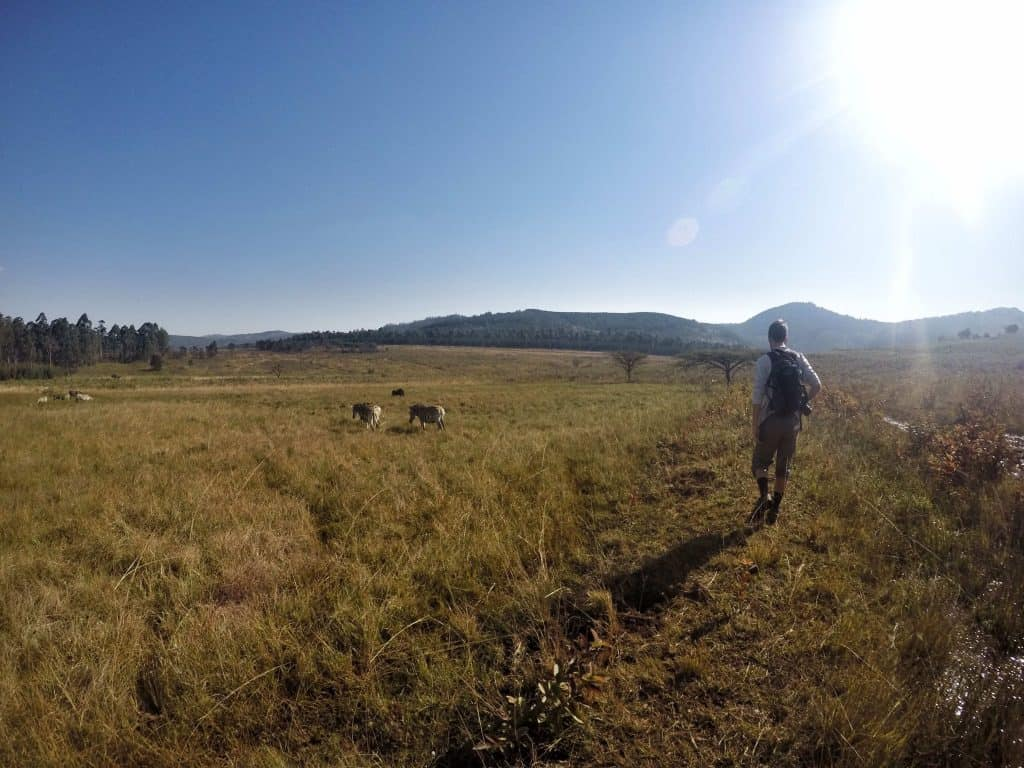 Hiking Around Swaziland
