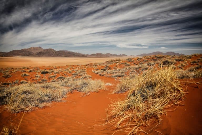 Why Travel Africa Namib Desert