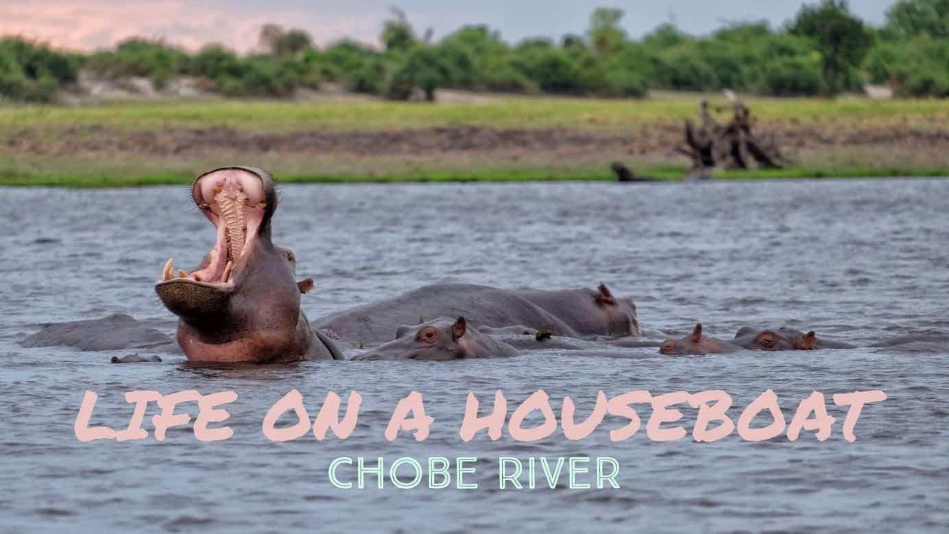 Living on the Zambezi Queen