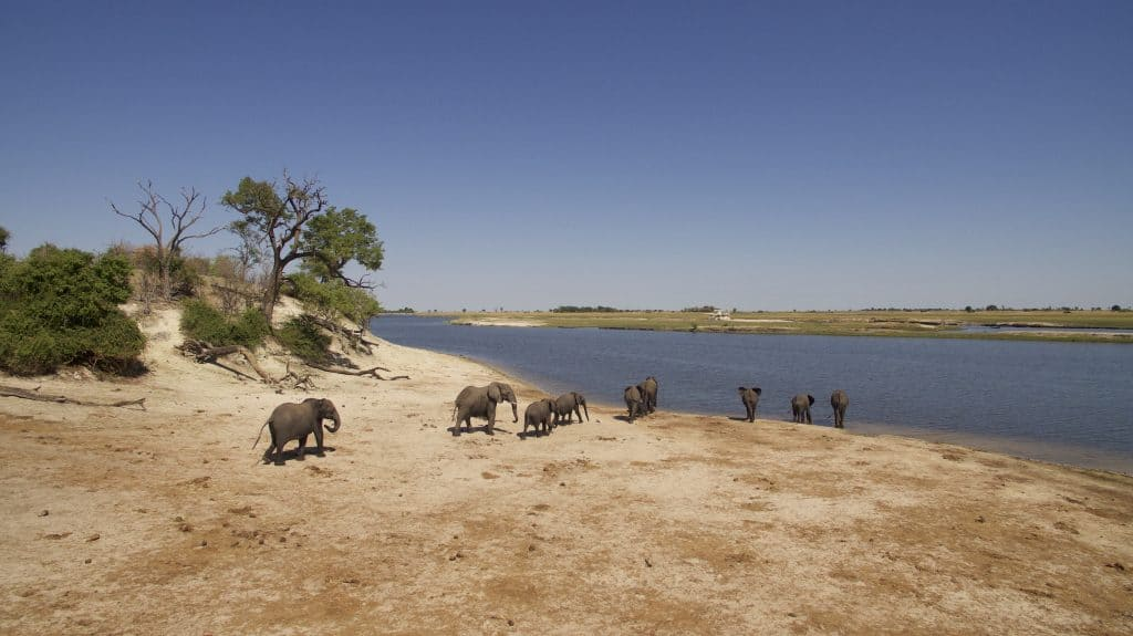 10 Things to Know Before You Travel to Botswana