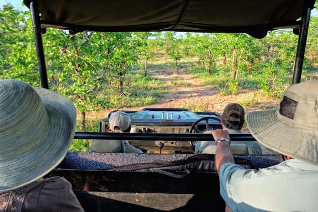 Game Drive in Zimbabwe