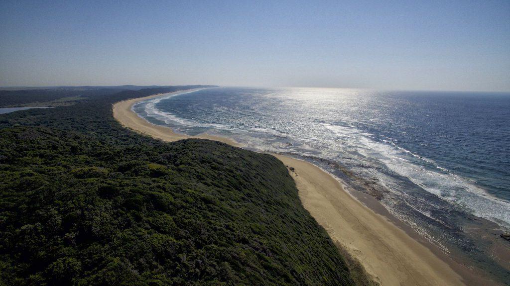 Mozambican Coast