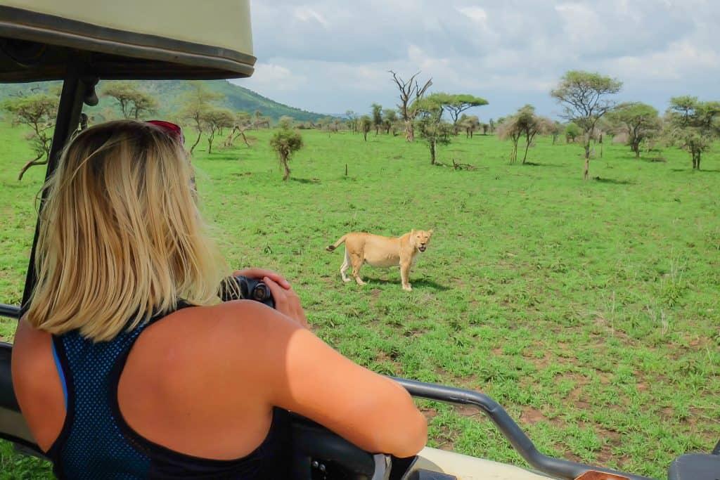 First Safari Quiet