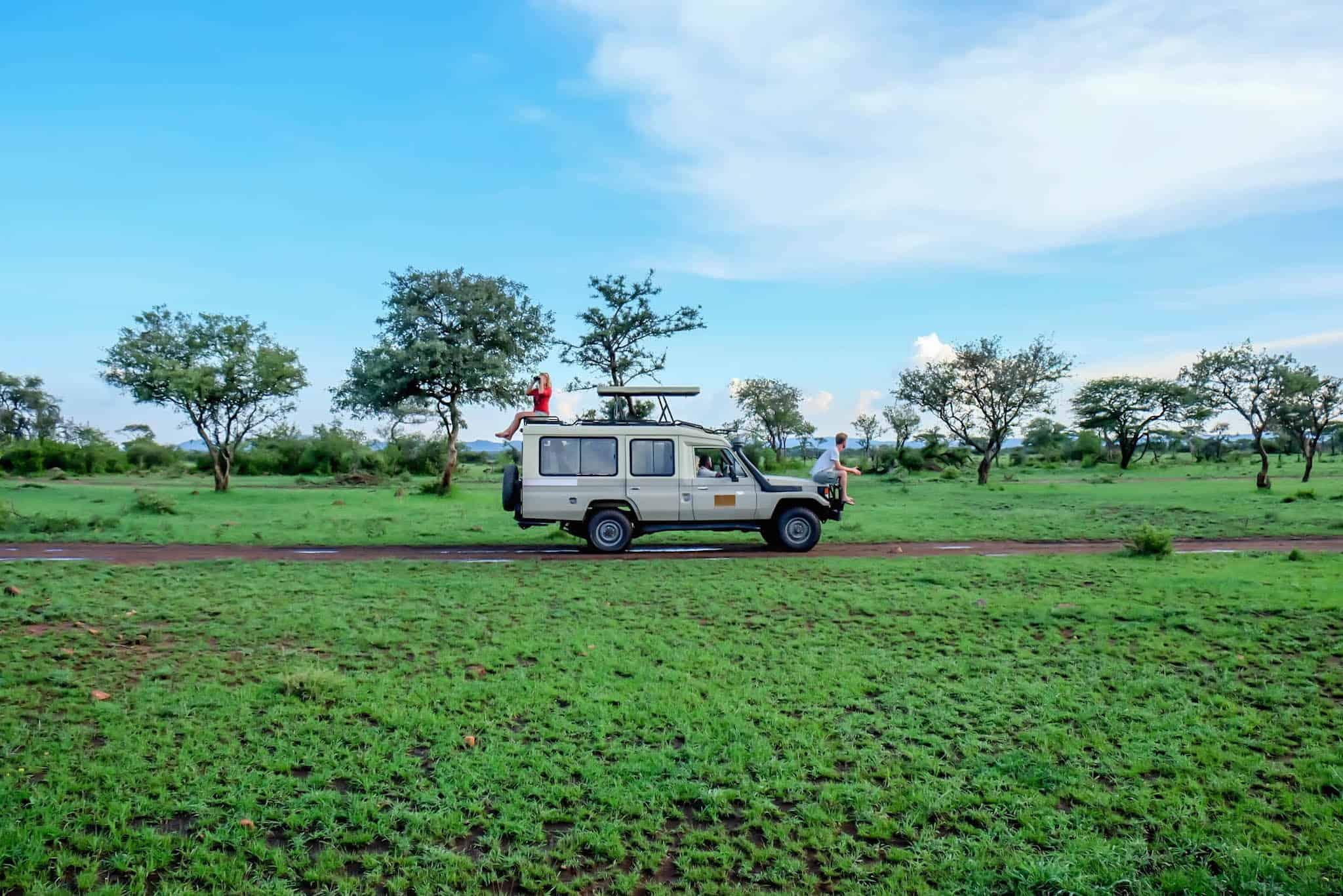 Safari In Africa Tanzania