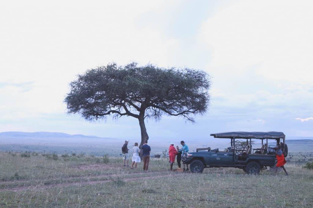 Masai Mara Cottars