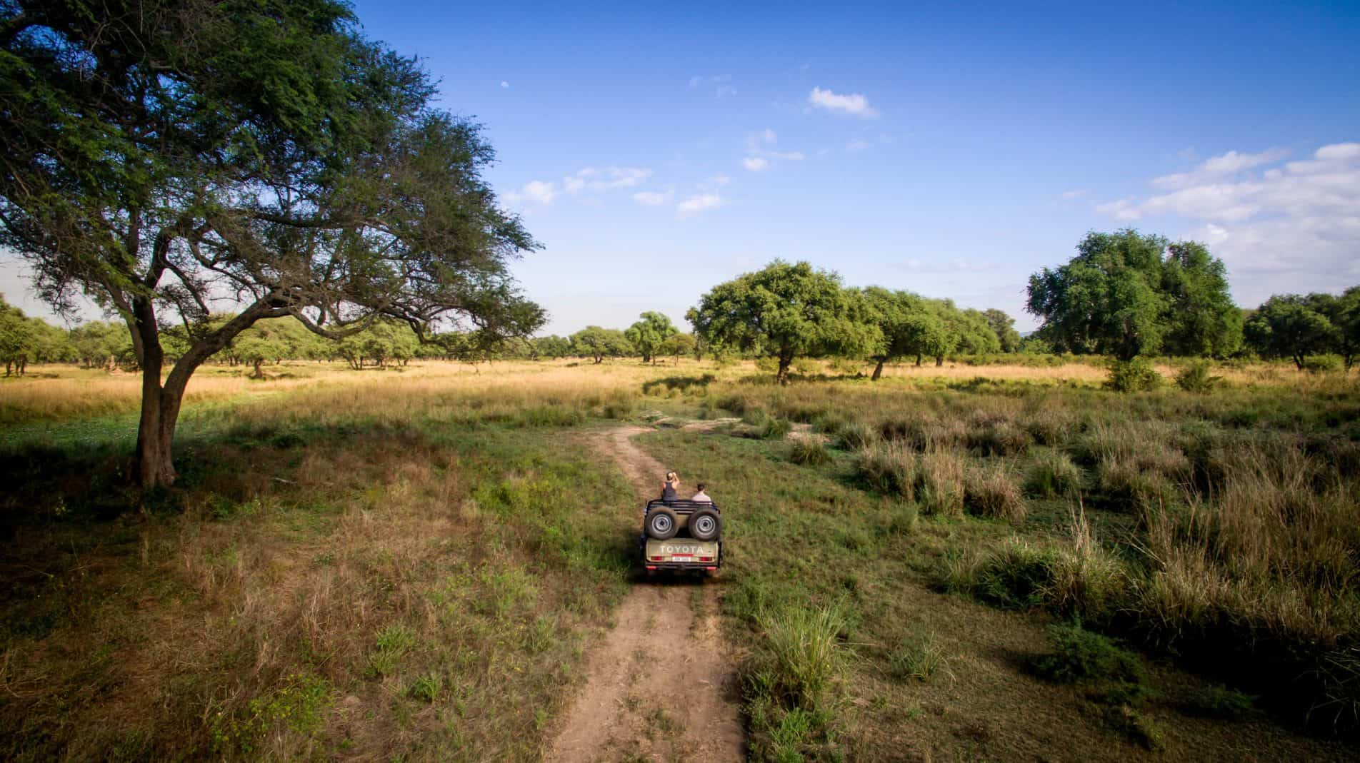 On Safari In Lower Zambezi