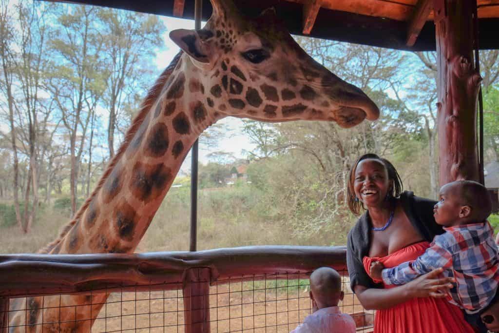 Giraffe Center in Kenya