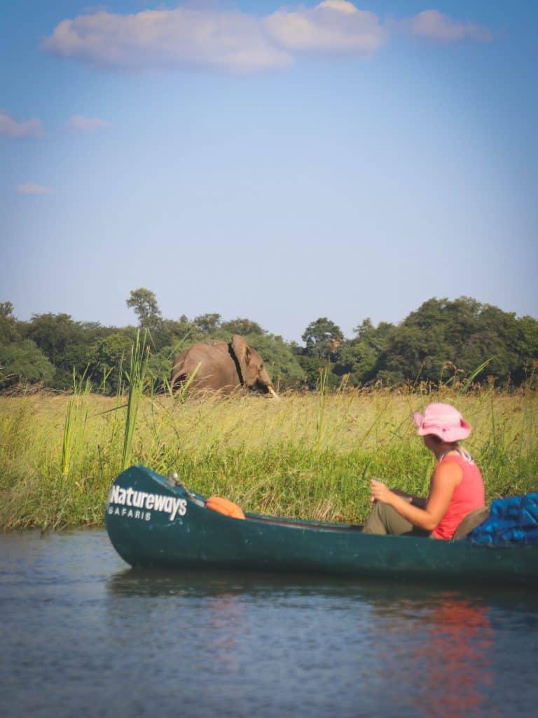 Canoe Safari Mana Pools
