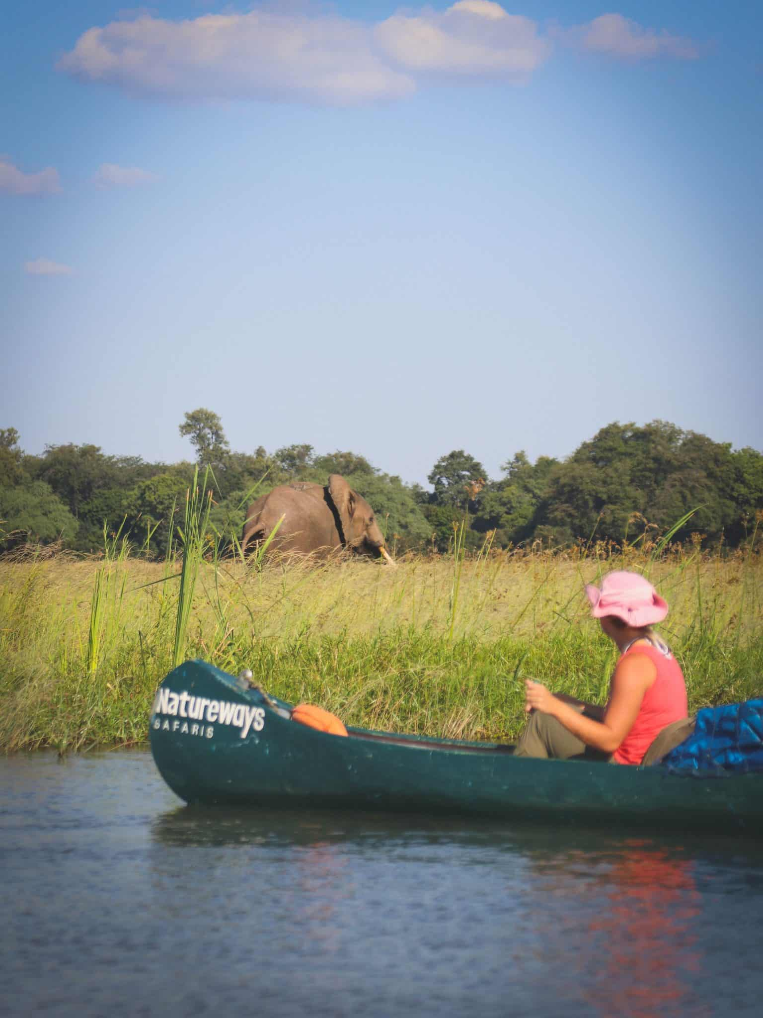 Canoe Safari Mana Pools