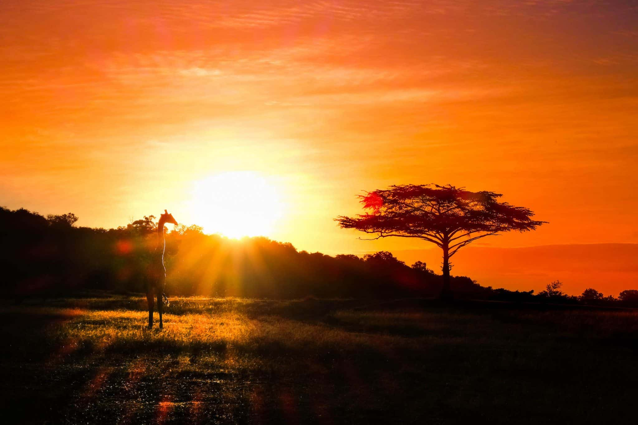 Africa Sunsets