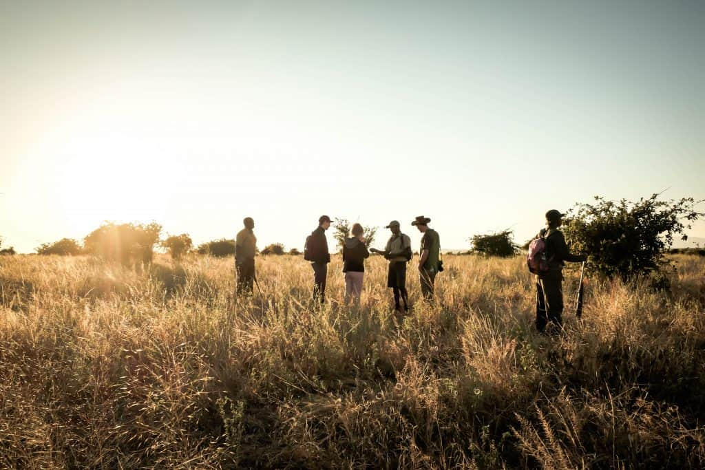 Walking Safari in Ruaha National Park