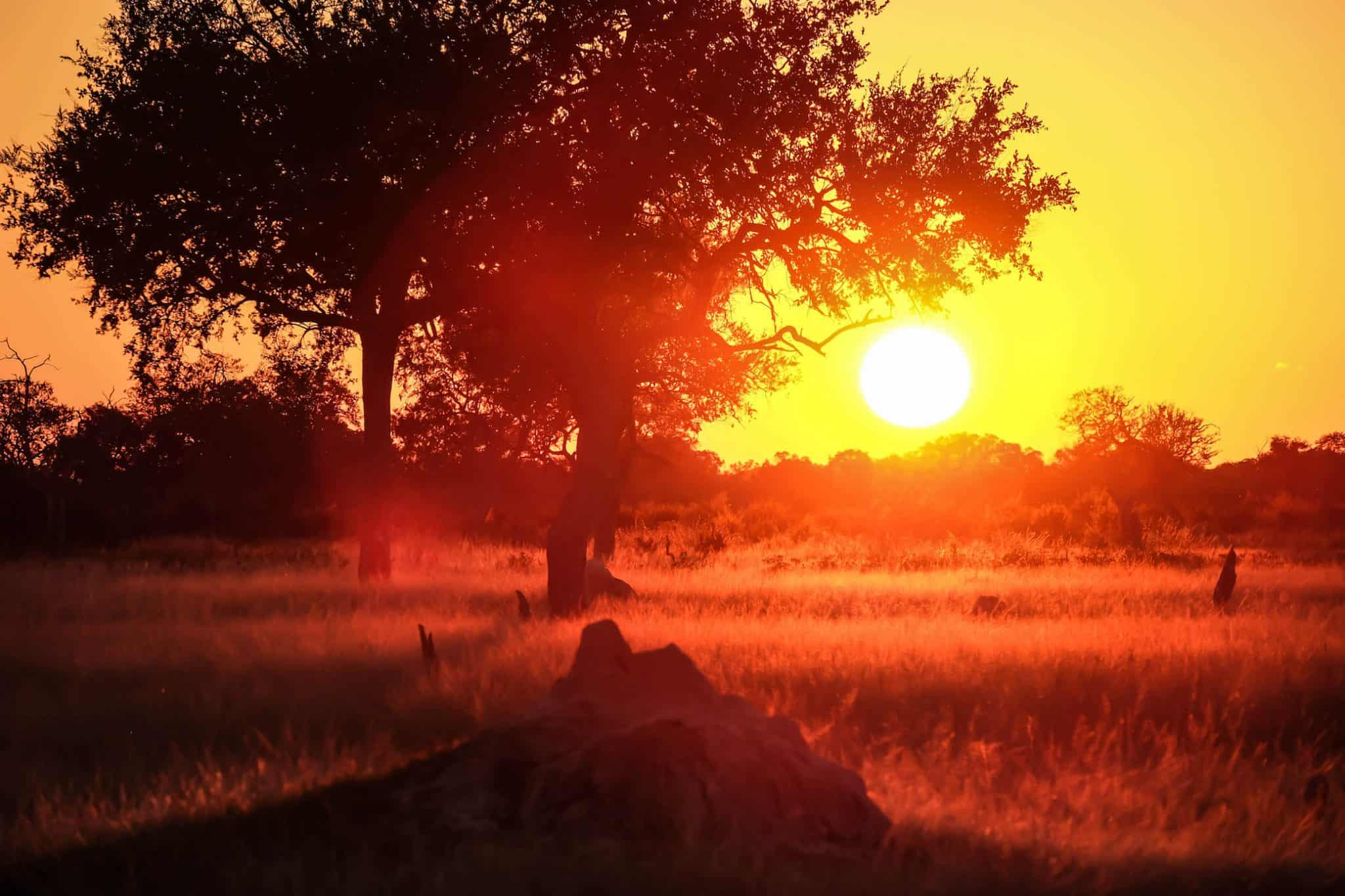 Sunset in Hwange