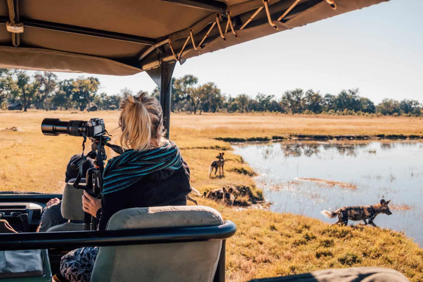 Safari Cameras