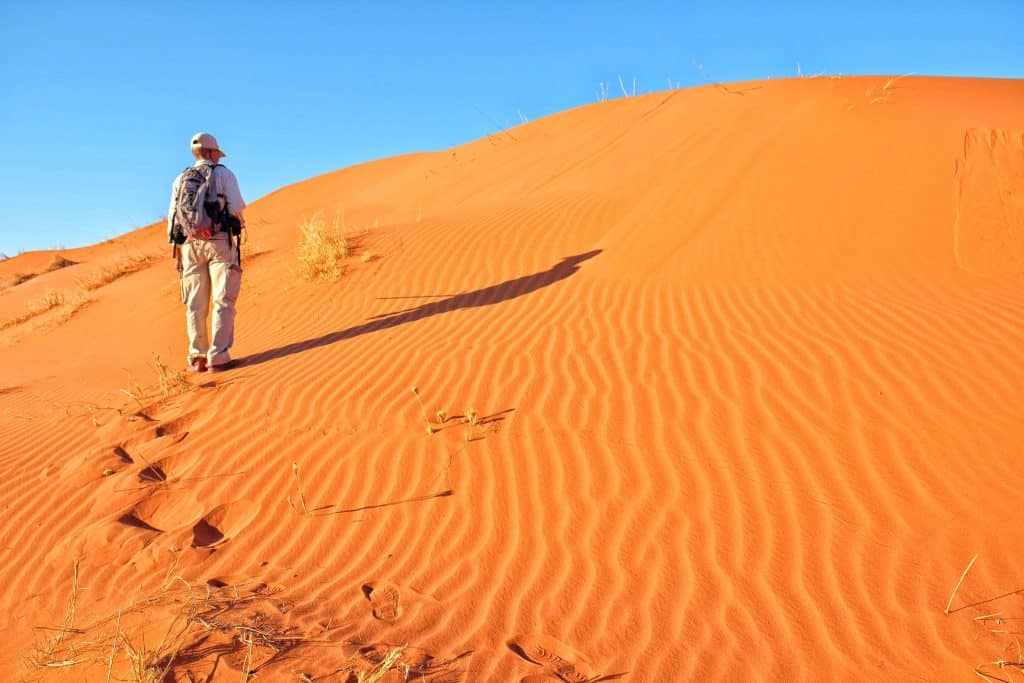 bush walk in the desert