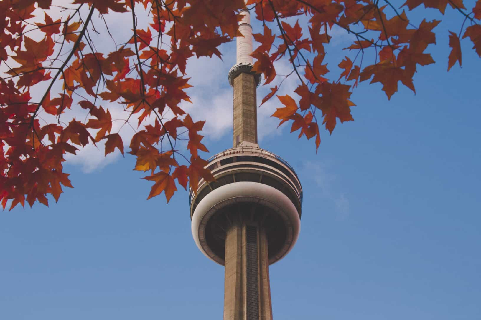 things to do in Toronto!