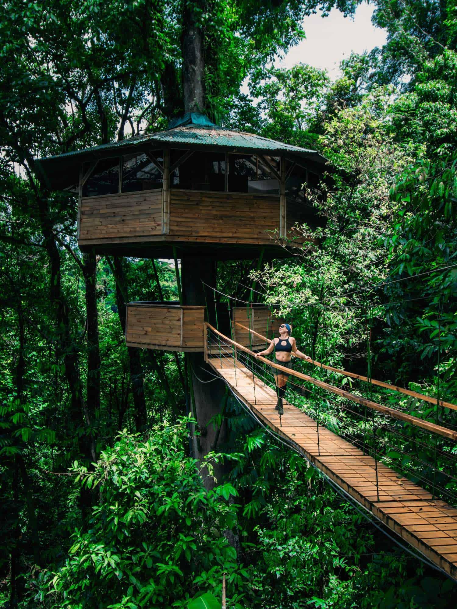Travel in Costa Rica - Treehouse - Finca Bellavista