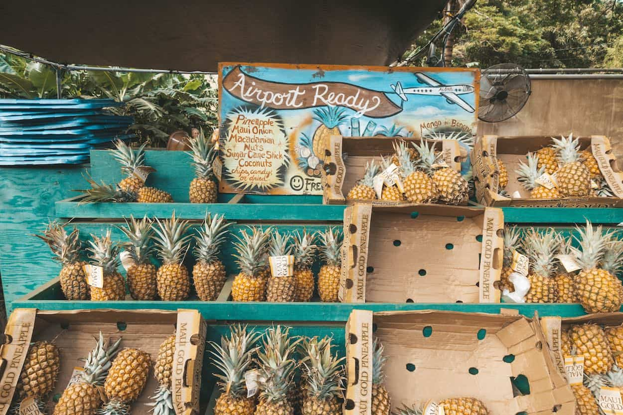 Things to do in Maui - Pineapples