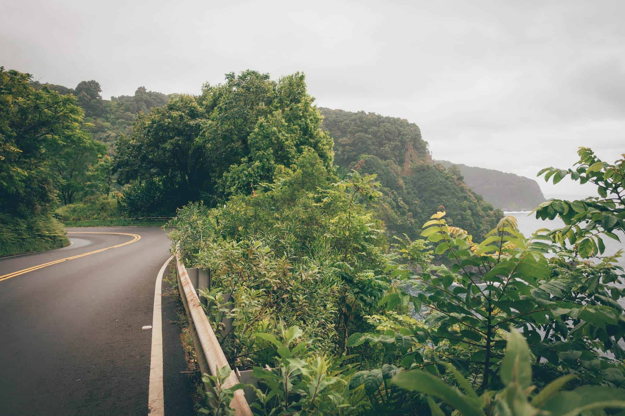 Things to do in Maui - Road to Hana