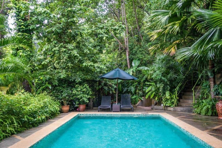 Where to stay Langkawi - Ambong Ambong