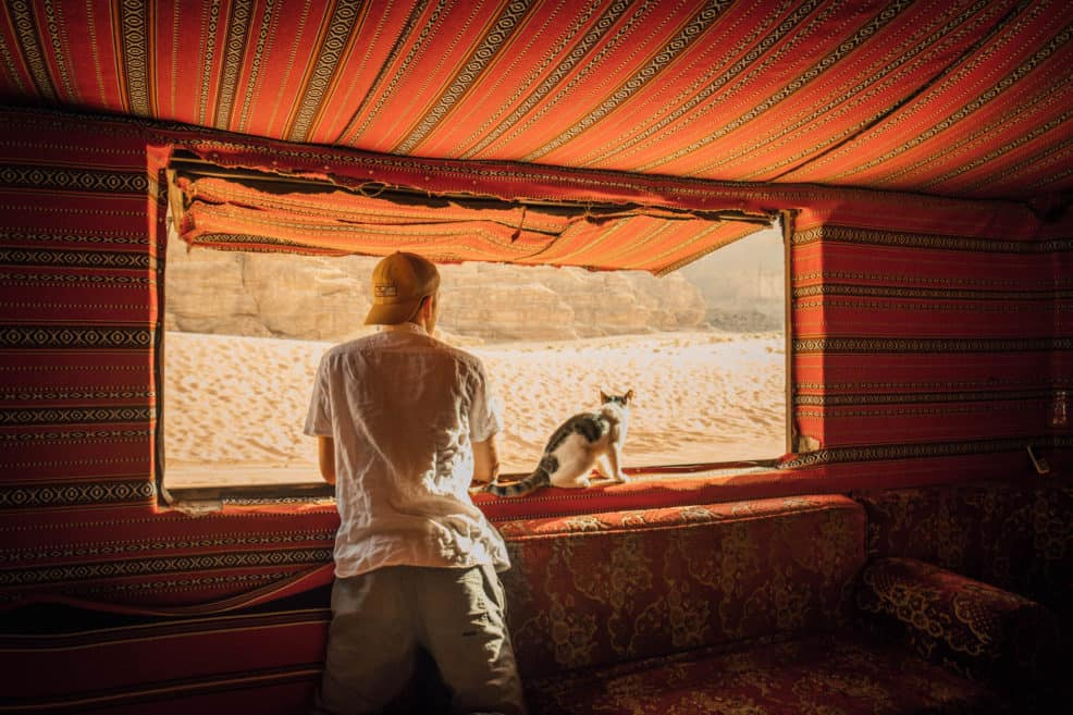 travel in jordan - window cat