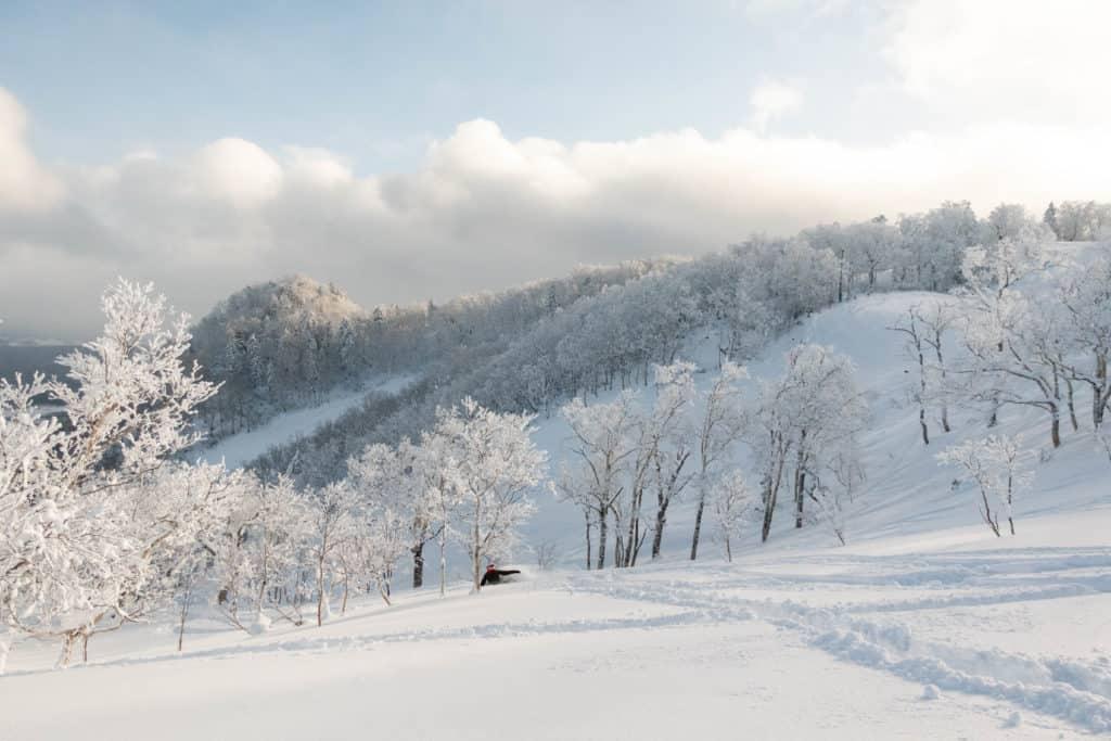Furano Ski Resort - Snowboard