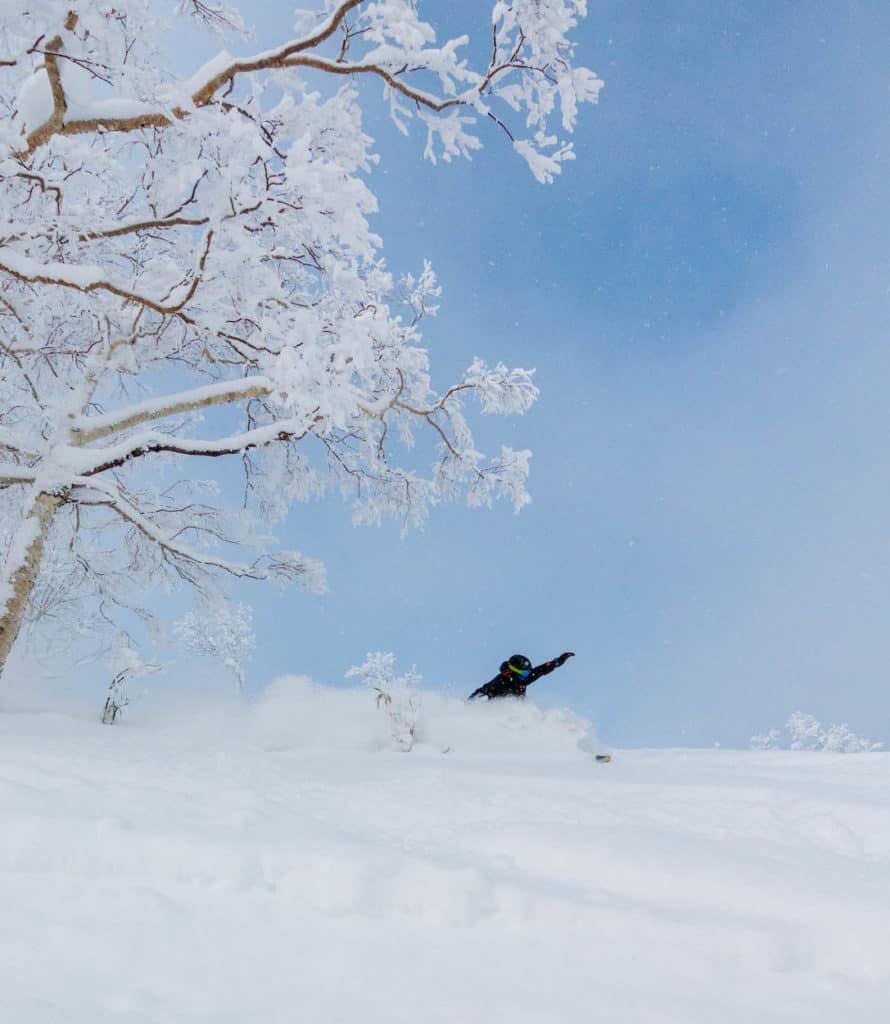 Furano Backcountry Powder Riding