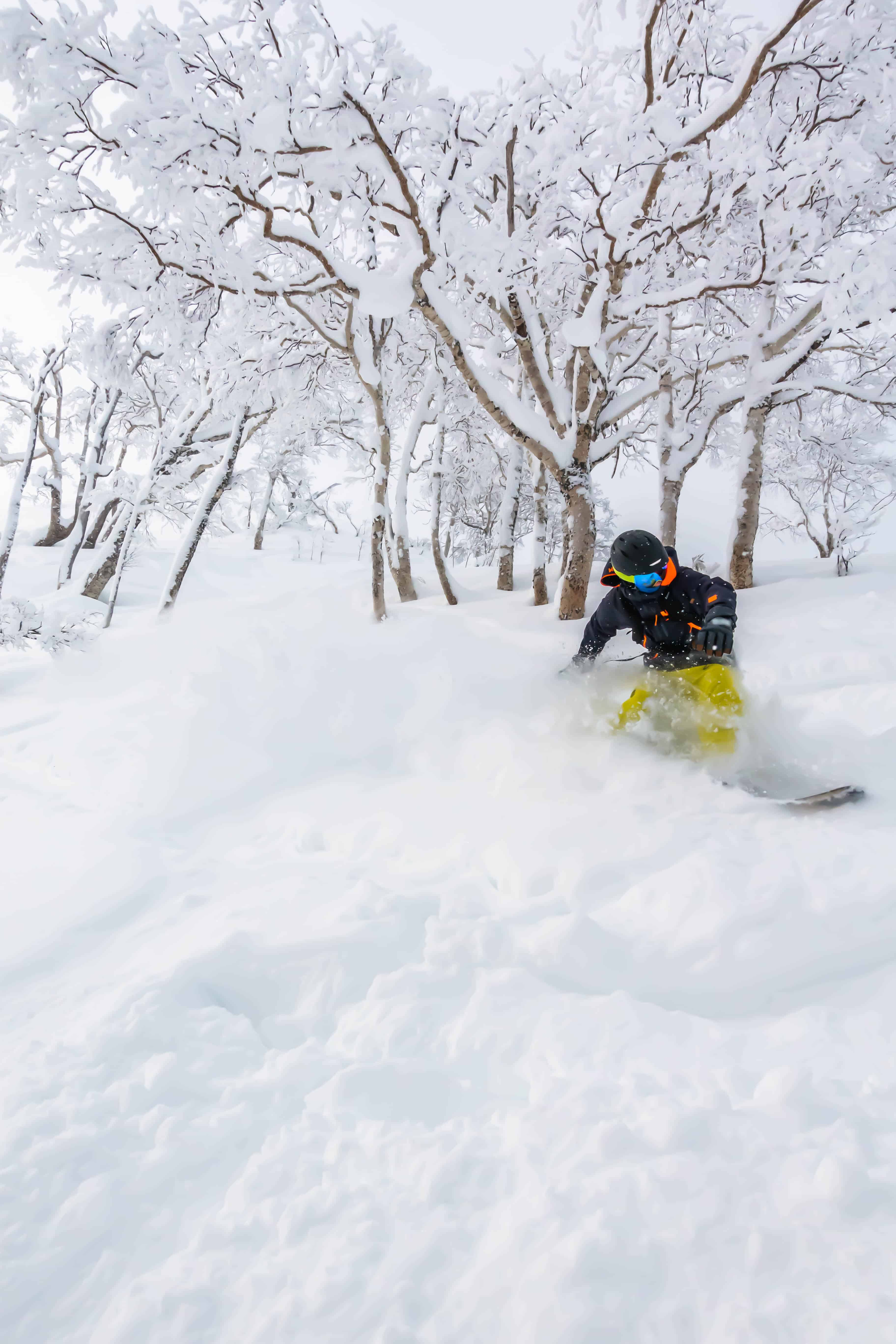 Cameron riding knee deep powder in the trees