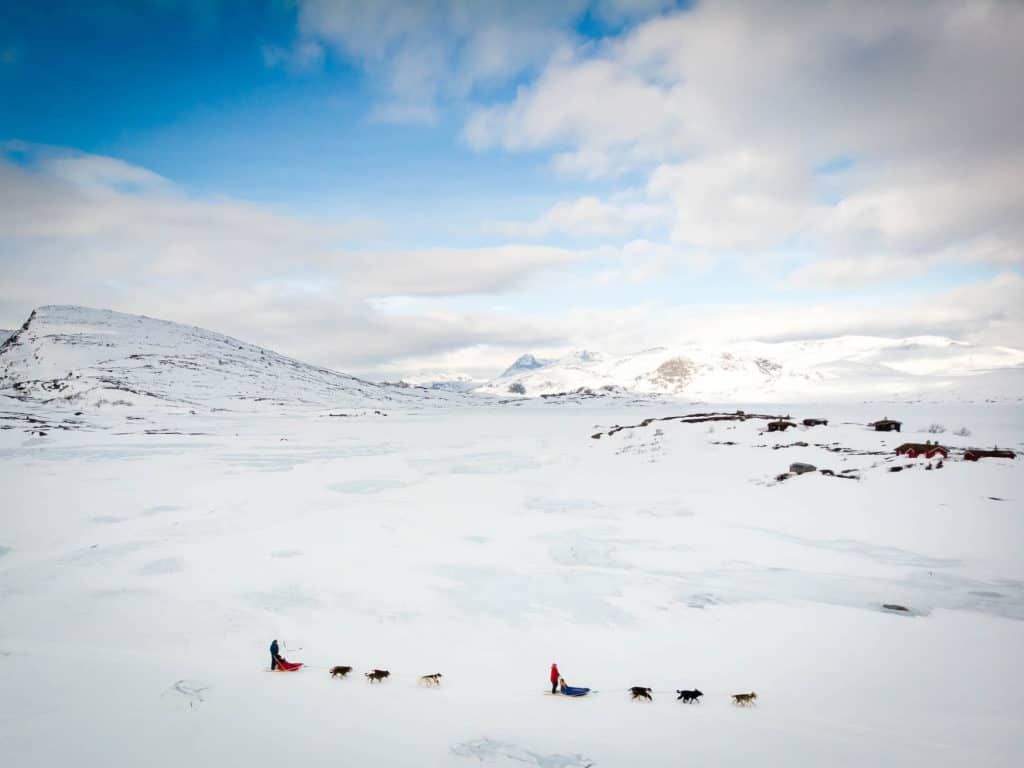 Dog Sledding — Winter in Norway — Frozen LAke