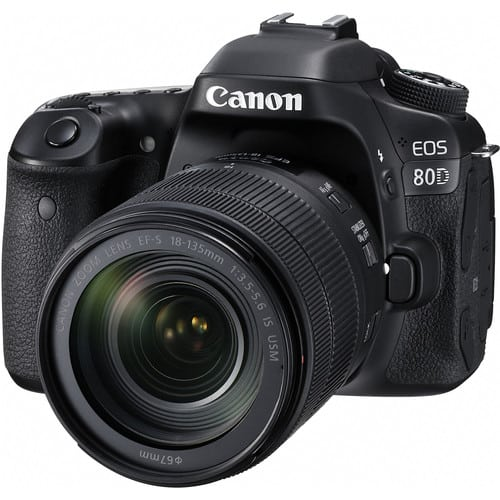 Best Safari Cameras Canon 80D