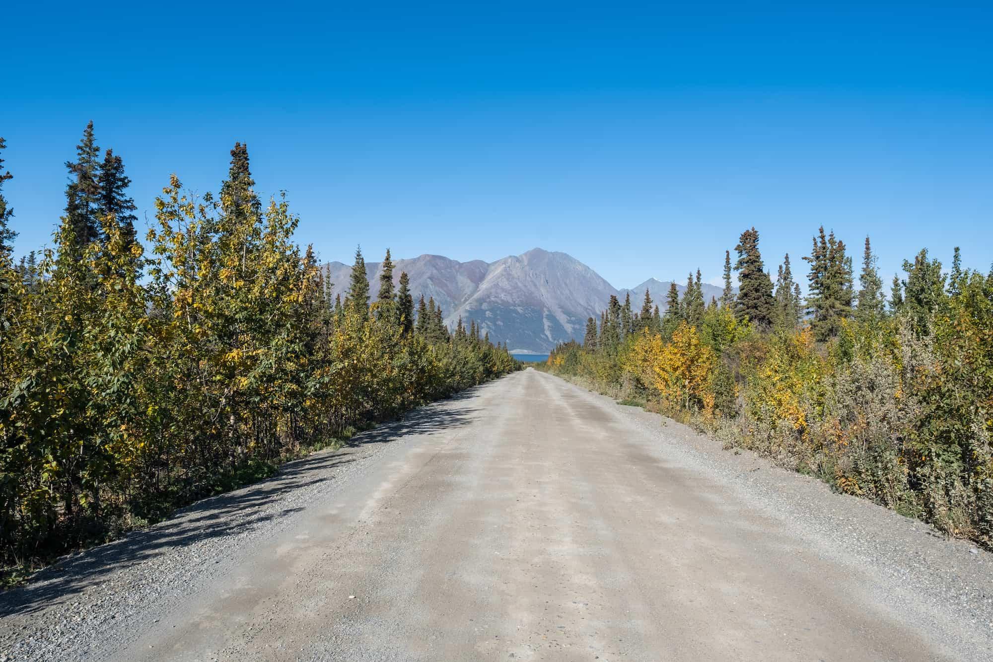 Yukon Road Trip