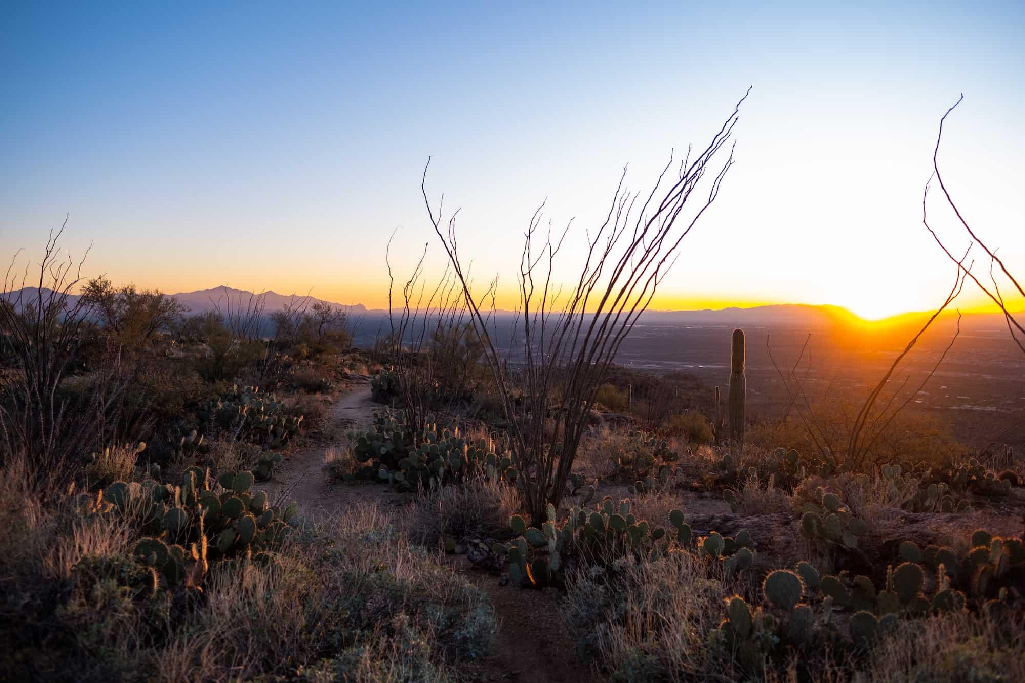 Sunset Landscape Hike Weekend in Tucson
