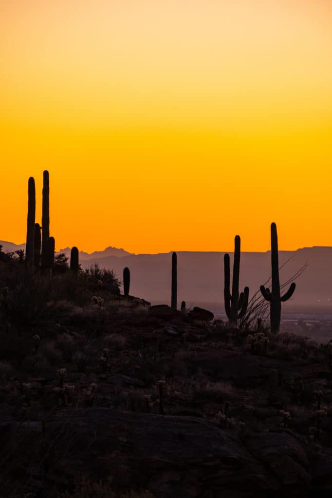 Sunset Weekend in Tucson