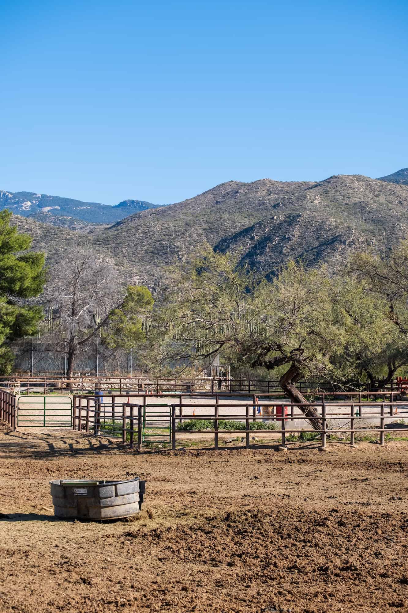 Dude Ranch Weekend in Tucson
