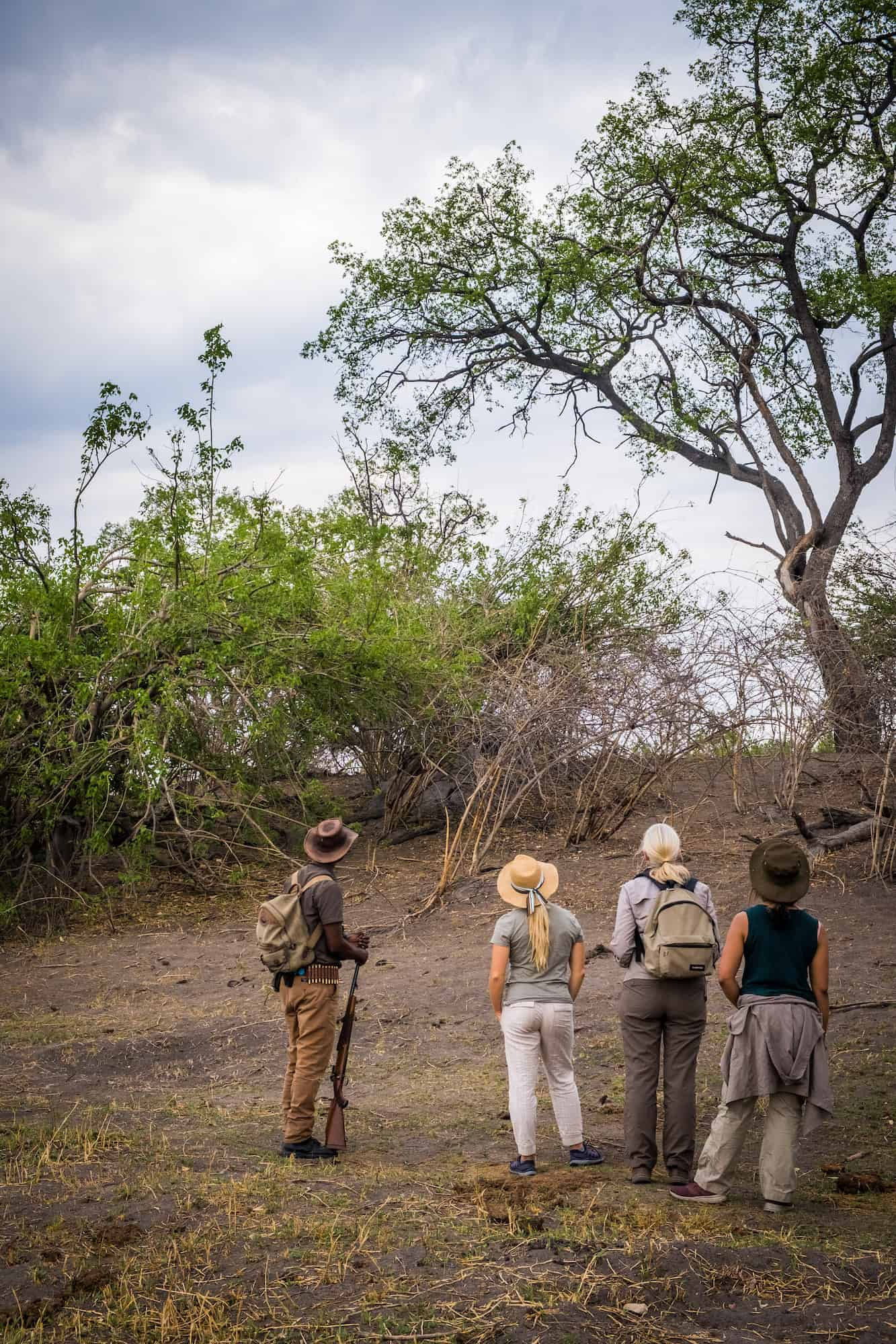 Walking-Safari-Botswana-Linyanti-Expedititons