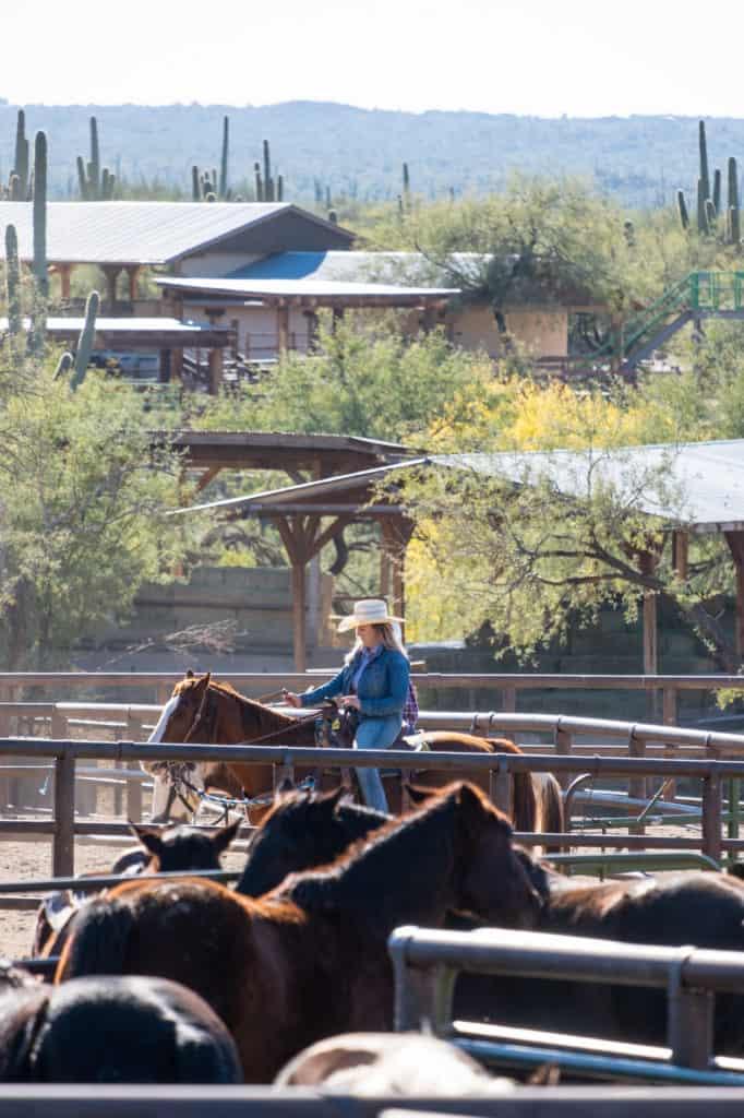 Cowboy Weekend in Tucson