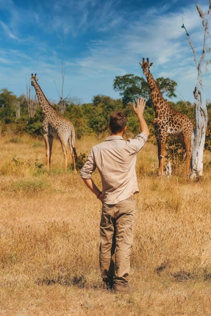 Quotes about safari