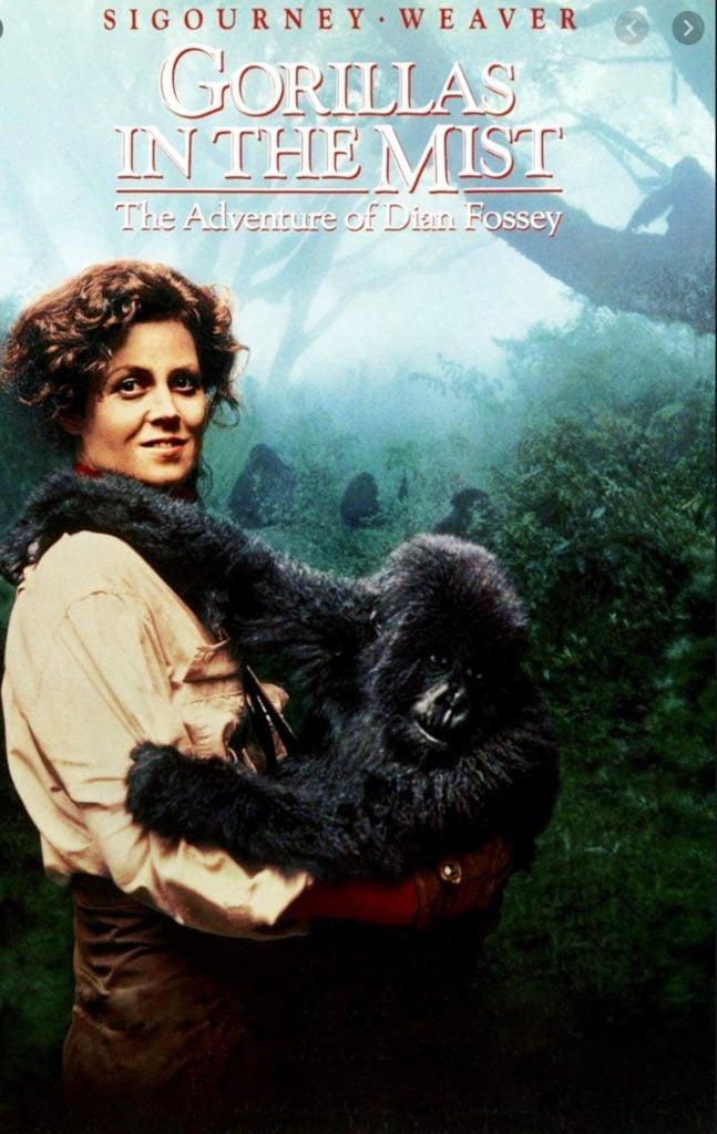best safari movies