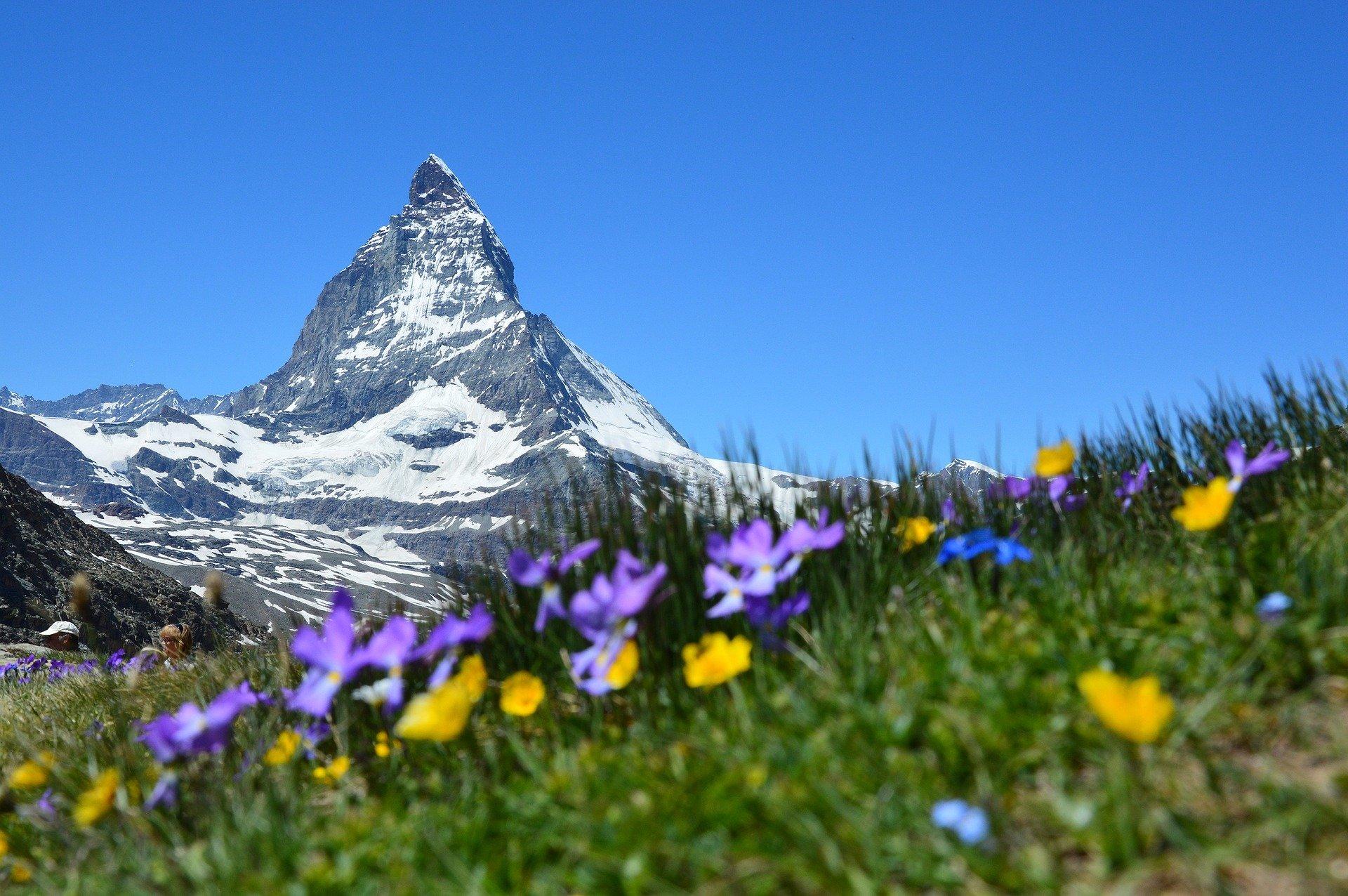 Zermatt Summer
