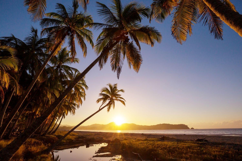 A beach in Costa Rica at sunset