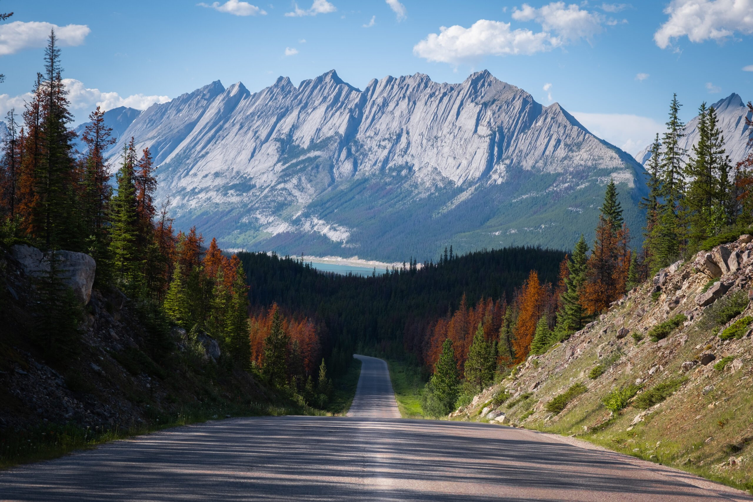 Things to do in Jasper National Park
