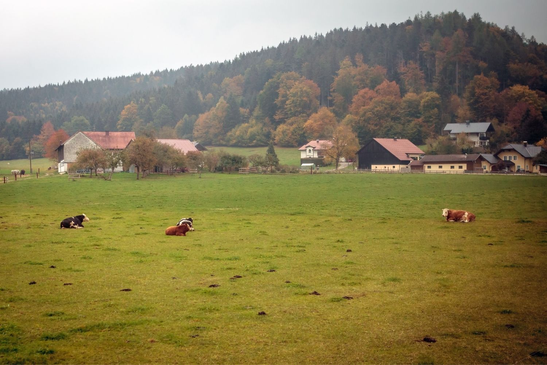facts about austria