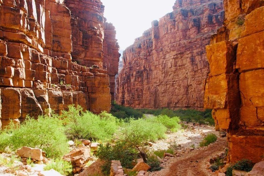 havasu canyon, bright red rock canyon walls