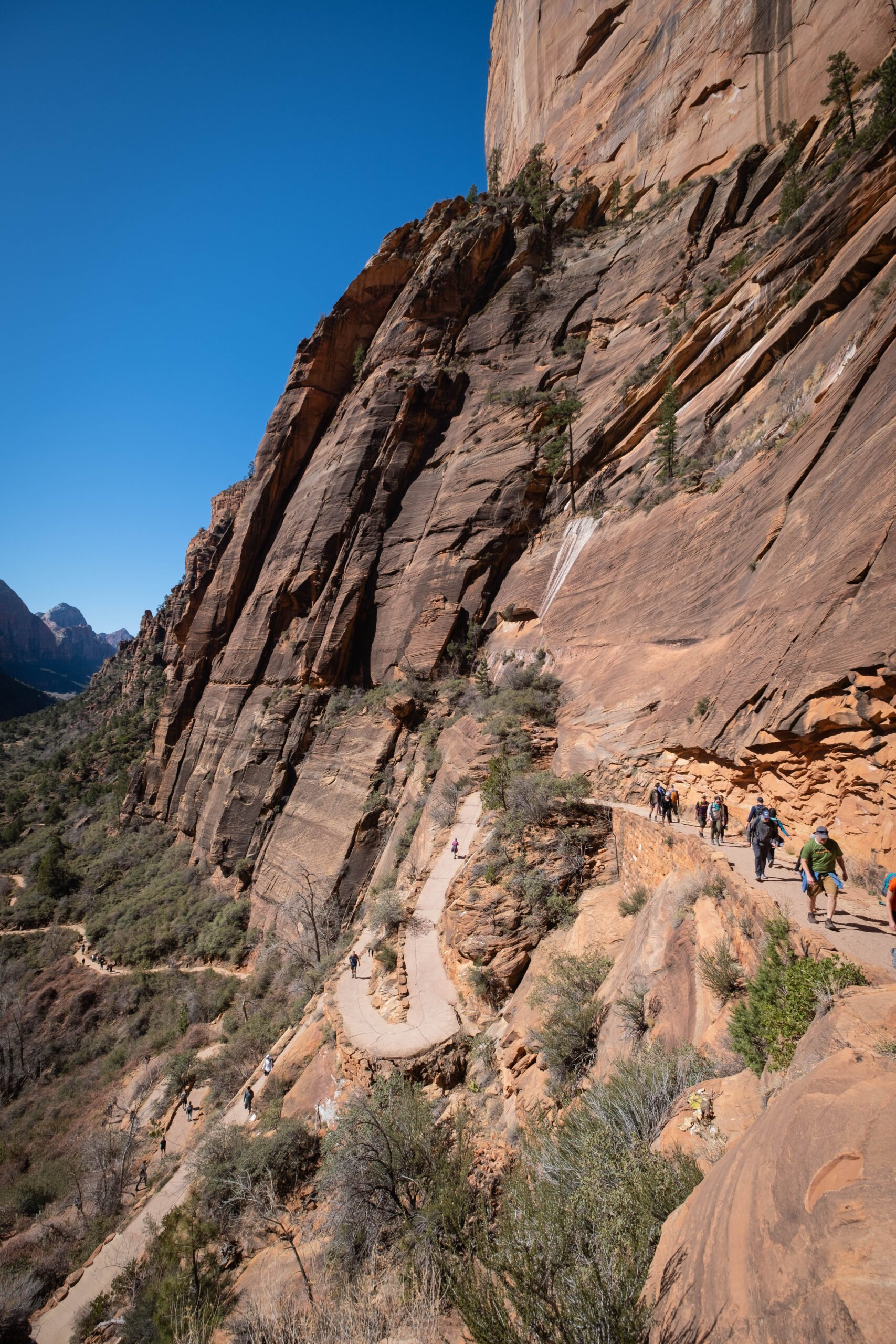 West Rim Trail Hike in Zion to Scouts Lookout and Angels Landing